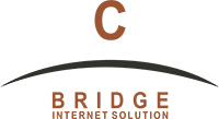 C Bridge Internet Solutions logo