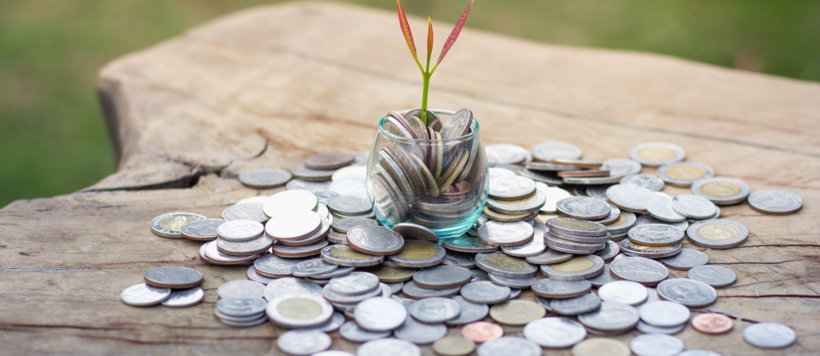 coins on tree stump, financial growth